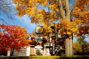 fall home 1
