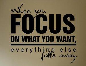 wellness focus