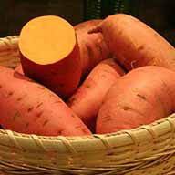 wellness sweet potato 2x2